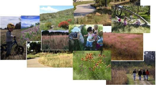 Our Vision for Prairie Park